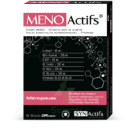 Synactifs Menoactifs Gélules B/60 à JACOU