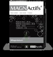 Synactifs Magnactifs Gélules B/60 à JACOU