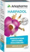 ARKOGELULES HARPAGOPHYTON Gélules Fl/150 à JACOU