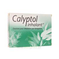 CALYPTOL INHALANT, émulsion pour inhalation par fumigation à JACOU