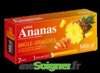 MILICAL ANANAS BRULEUR DE GRAISSE à JACOU