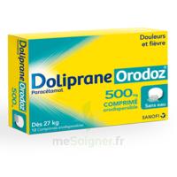 Dolipraneorodoz 500 Mg, Comprimé Orodispersible à JACOU