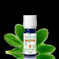 Puressentiel Huiles essentielles - HEBBD Ravintsara BIO* - 5 ml à JACOU