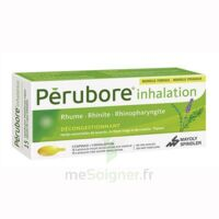 PERUBORE Caps inhalation par vapeur inhalation Plq/15 à JACOU