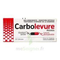CARBOLEVURE Gélules adulte Plq/30 à JACOU