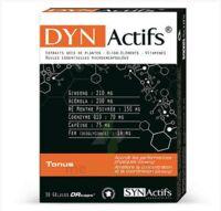 Synactifs Dynactifs Gélules B/30 à JACOU