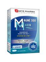 Magné 300 Marin (2 mois) à JACOU
