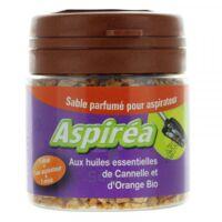 Aspiréa Grain pour aspirateur Cannelle Orange Huile essentielle Bio 60g à JACOU