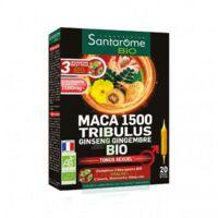 Santarome Bio Maca 1500 Tribulus Ginseng Gingembre Solution buvable 20 Ampoules/10ml à JACOU