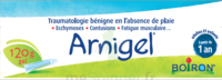 Boiron Arnigel Gel T/120g à JACOU